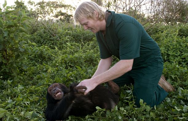 luke_tickling_chimp