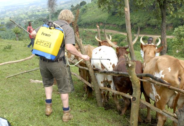 uganda_community_day